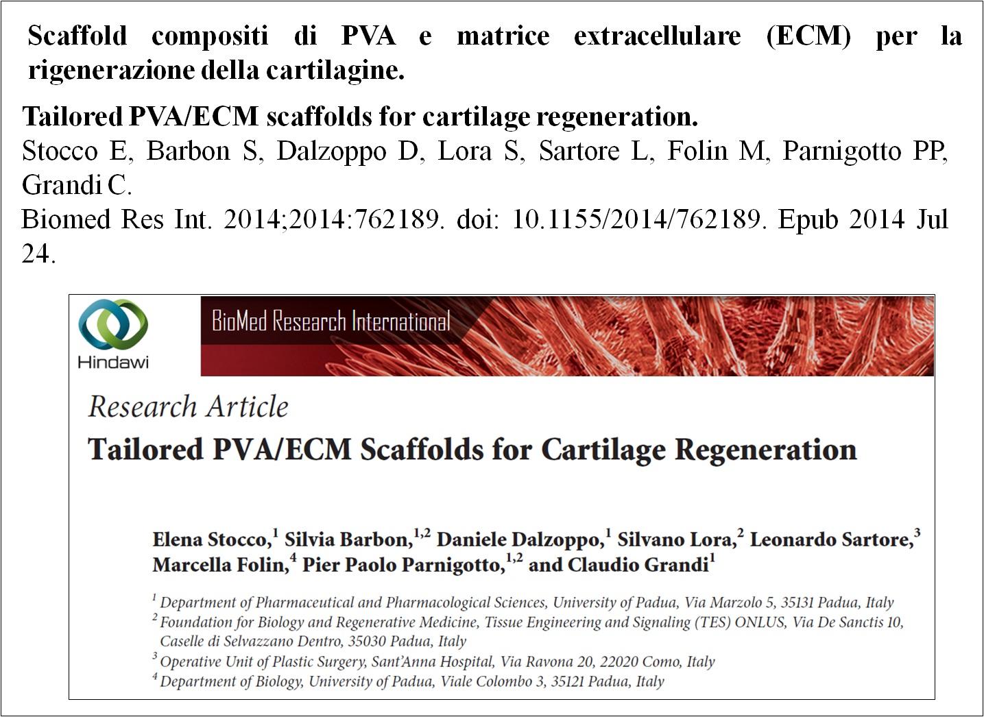 Paper 2 corretta_PVA